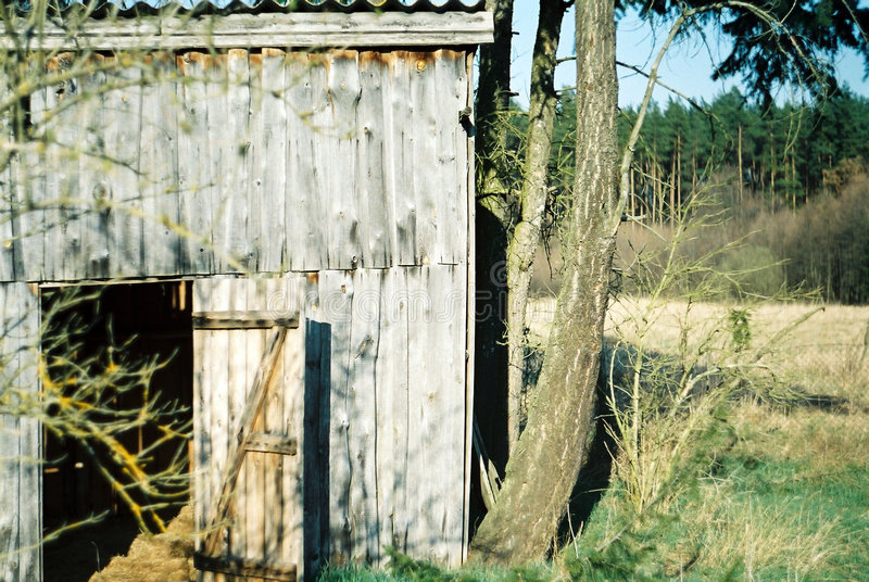 Download Old hut stock photo. Image of wall, trees, sunlight, relax - 40178