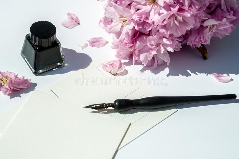 Old ink pen and ink bottle on white background. Vintage calligraphy pen and bottle of ink. Cherry blossom twig with black ink and. Old ink pen and ink bottle on royalty free stock photography
