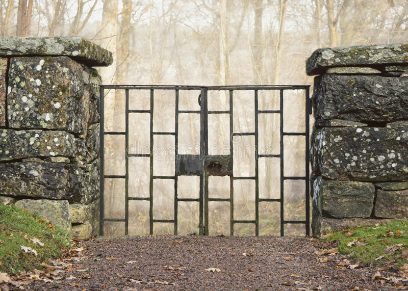 Old iron gate in old stone wall in front of misty forest. Cemetery iron gate in beautiful old stone wall in front of misty winter or autumn forest. Rust and stock image