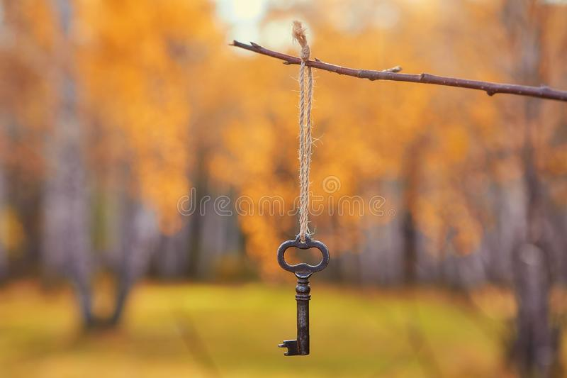 An old iron key on a branch. Autumn natural background.   Romantic scene, soft focus, copy space. An old iron key on a branch. Autumn natural background royalty free stock image