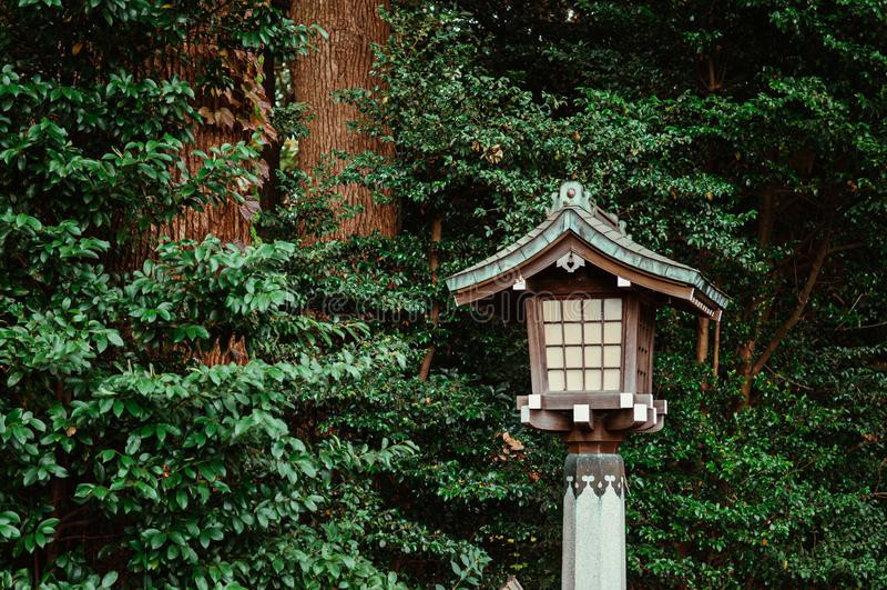 Japanese lamp of Meiji Jingu Shrine under big tree in shrine forest park Tokyo royalty free stock photography