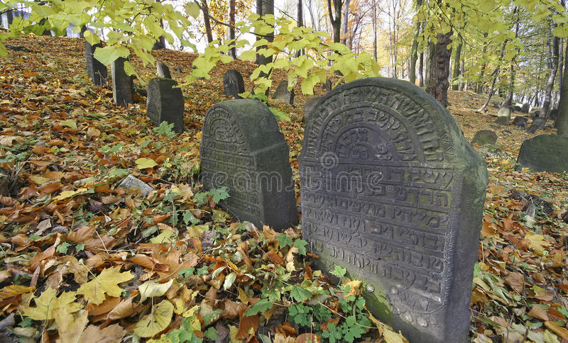 Old Jewish Cemetery royalty free stock image