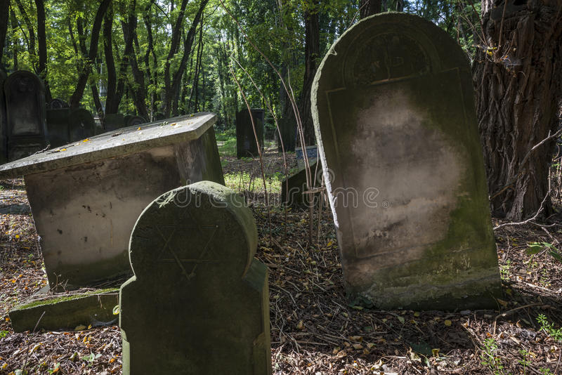 Download The Old Jewish Cemetery In Warsaw Stock Photo - Image: 27298958