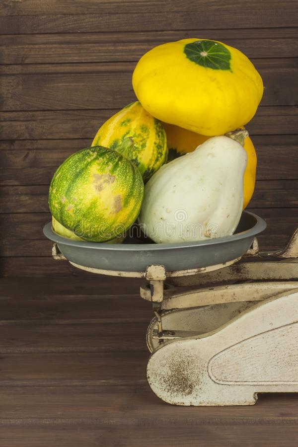 Old kitchen scale vegetable. Autumn harvest of pumpkins. Preparing for Halloween. Growing vegetables in a home garden. royalty free stock images