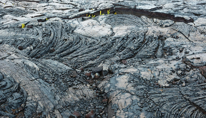 Old lava flow kilauea big island hawaii stock photography