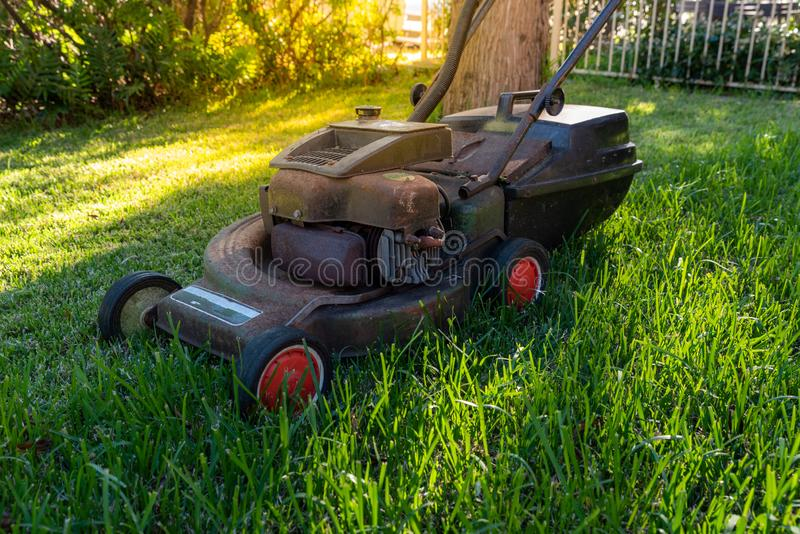 Old Lawn mower cutting grass, grass, equipment, mowing stock photography