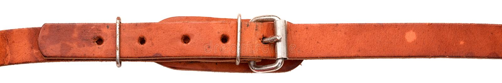 Old leather belt isolated. On white background stock images