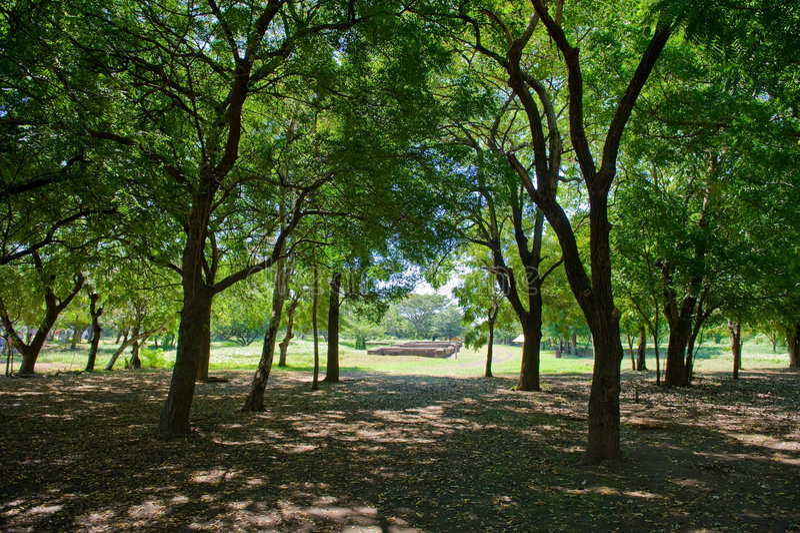 Download Old Leon Landscape Nicaragua Stock Photo - Image: 7690288