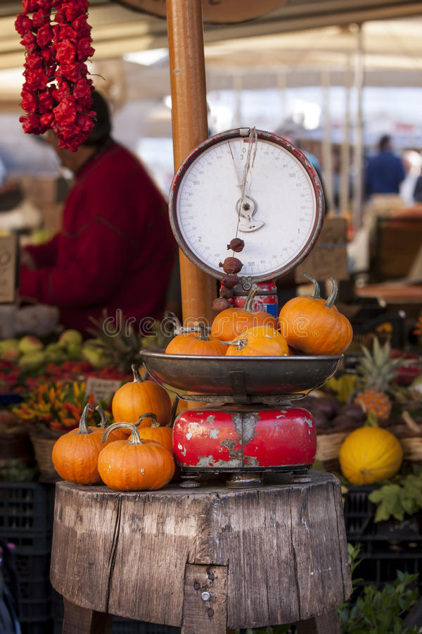 Old libra balance and pumpkins, italian outdoor market. Libra old with over pumpkins. An old balance has on his plate and side numerous pumpkins. In an outdoor stock image