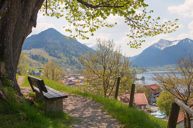 The old lime tree at weinberg hill, schliersee in spring. Bench unter the over hundred years old linden tree at weinberg hill, spa town schliersee, upper stock image