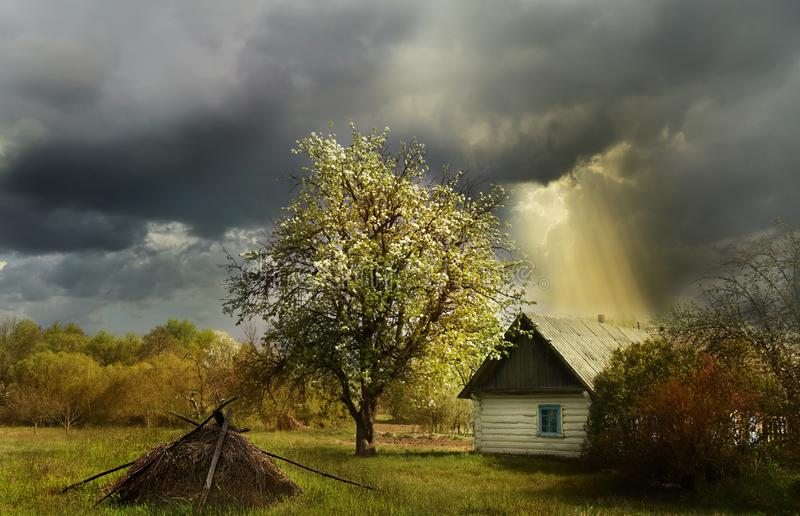 An old log cabin andand flowering fruit trees during a thunderstorm. Ukrainian village. stock photos