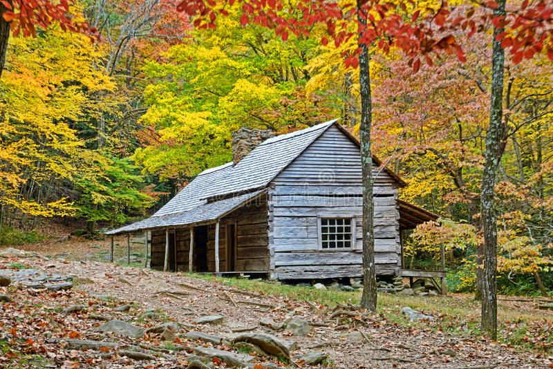 Bud Ogle log home surrounded with fall colored leaves. stock photography