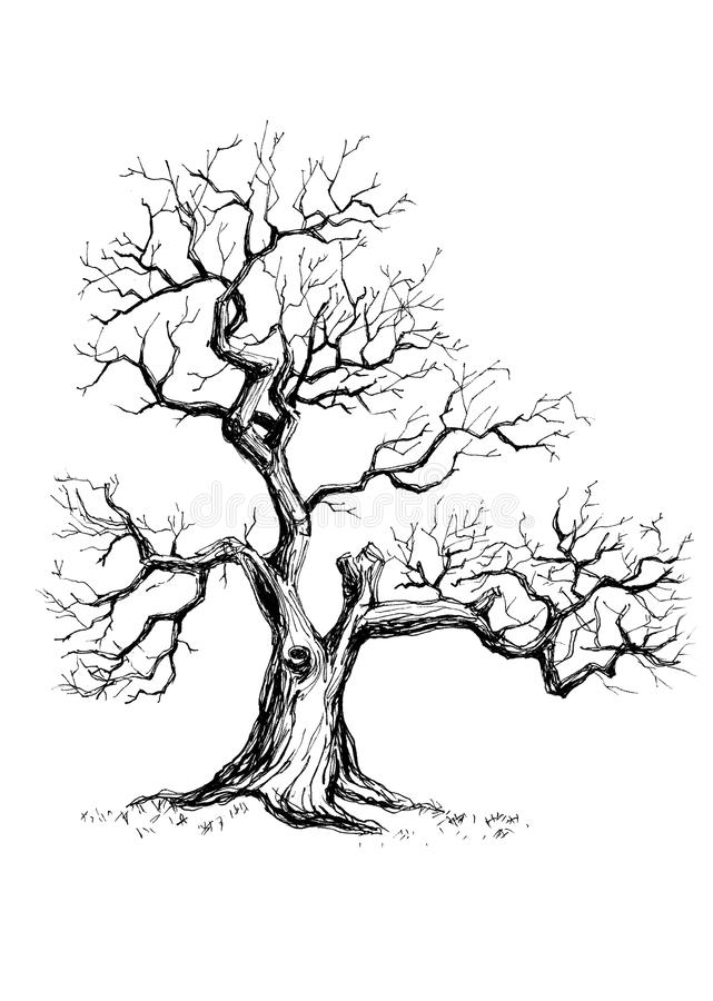 Old lonely depressive tree. Hand drawn illustration of an old lonely tree that has lost all its leaves stock illustration