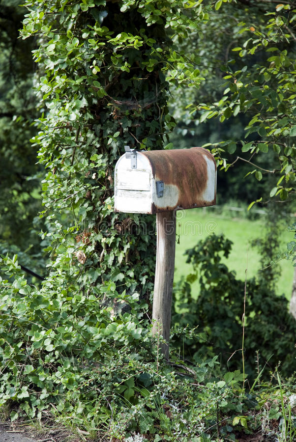 Download Old mailbox stock photo. Image of desuetude, leaves, send - 15828032