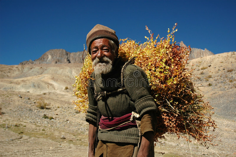 The old man in the Himalayas royalty free stock image