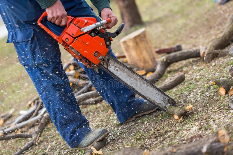 Old man holding orange chainsaw with his bare hands and cutting a branch placed on the ground. Orange chainsaw in action stock photos