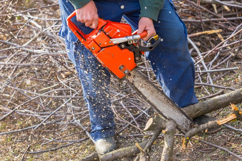 Old man holding orange chainsaw with his bare hands and cutting a branch placed on the ground. Orange chainsaw in action stock photo