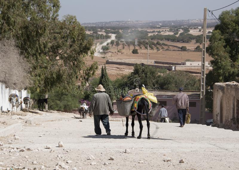 An old man leading his grocery laden donkey away from the weekly berber open market a short way from Essaouira in Morocco - Landsc stock photography