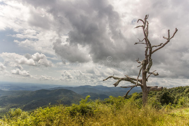 Download Old Man On The Mountian Stock Photo - Image: 83712909
