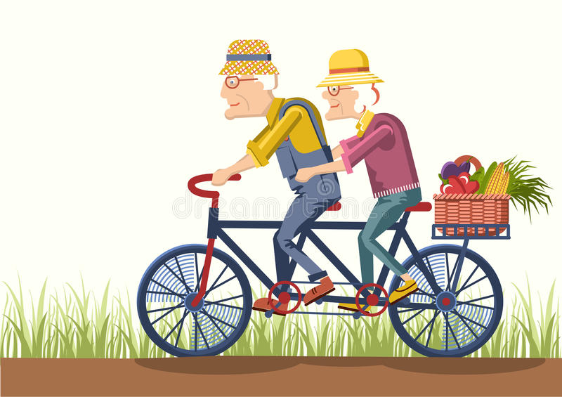 Old man and old woman drive by bike.Vector couple gardeners royalty free illustration