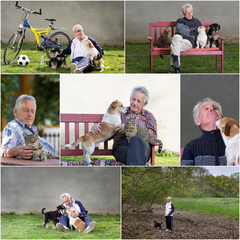 Old man with pets stock photos