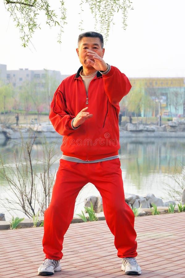 Download Old Man Play Taiji Boxing Royalty Free Stock Image - Image: 4851356