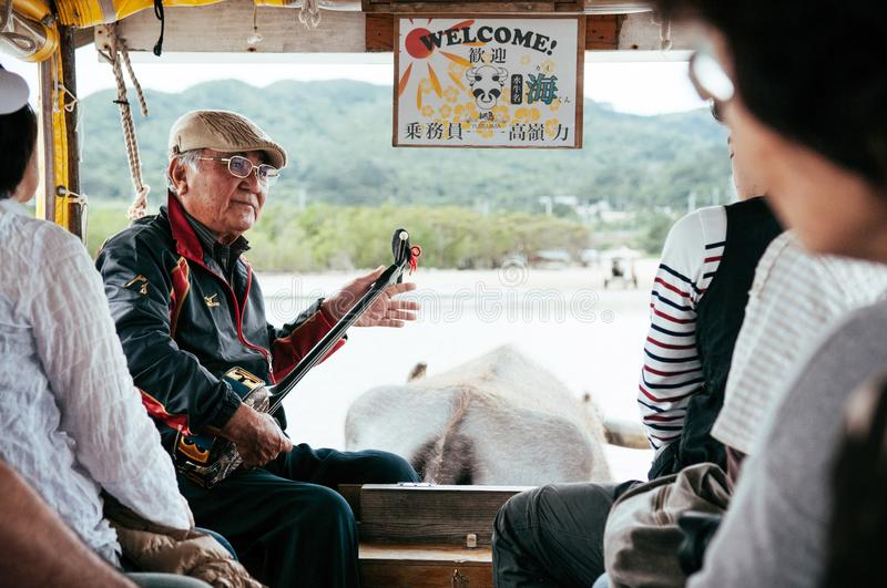 Old man playing Sanshin or Shamisen on Iriomote buffalo cart tour, Okinawa stock images