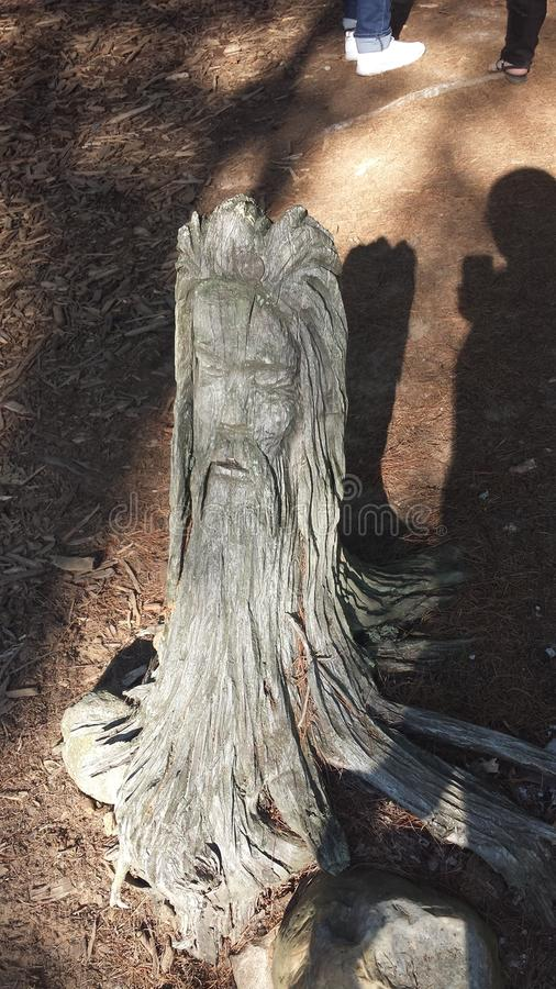A Old Man Face carved out of a Tree Stump. An Old Man& x27;s Face carved out of a stump in the Wheatland festival campgrounds in Michigan stock photos