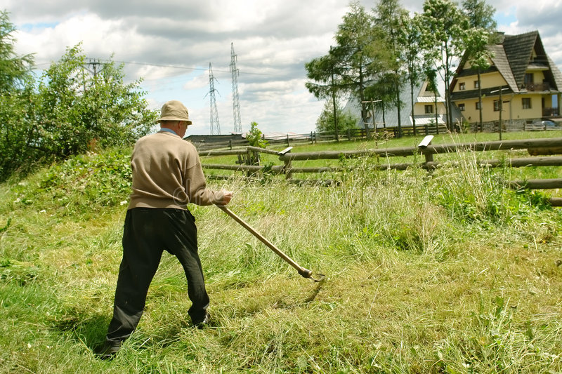 Download Old man with scythe stock photo. Image of nature, field - 2775560