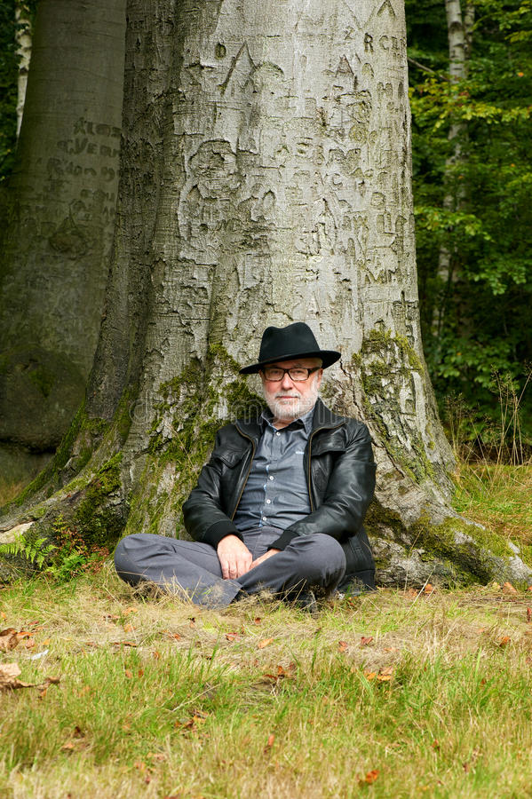 Download Old Man Sitting Under Tree In The Park Stock Photo - Image: 34446408