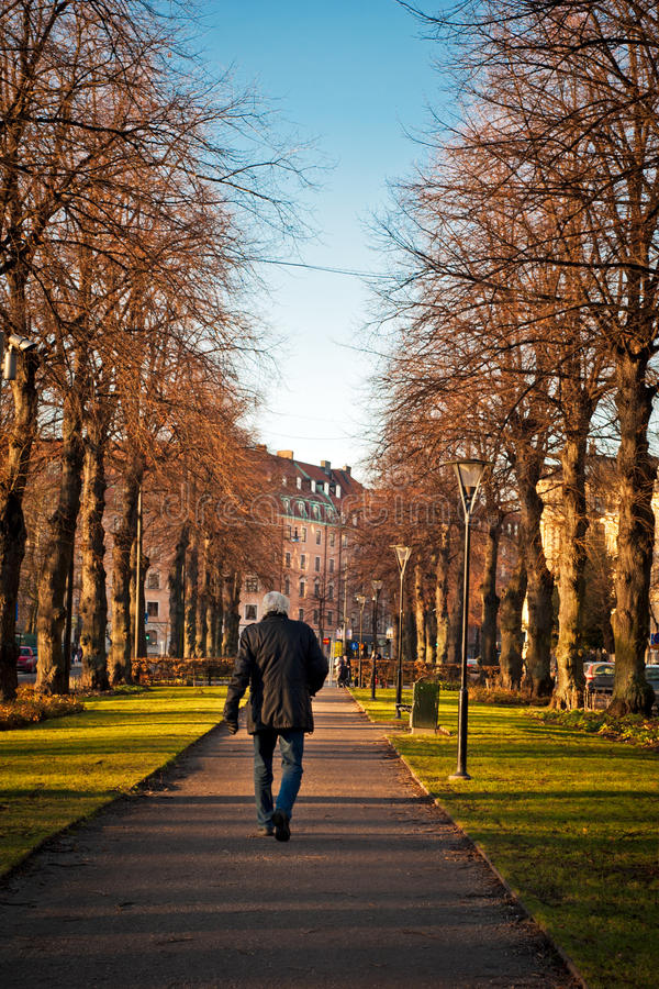 Download Old man walking stock image. Image of real, fall, haired - 23059539