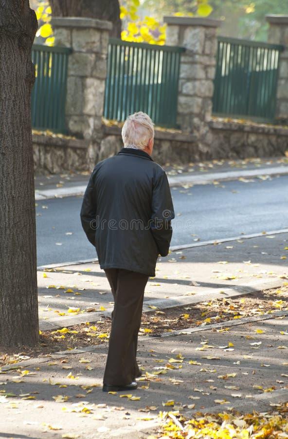 Old man walking in park royalty free stock image
