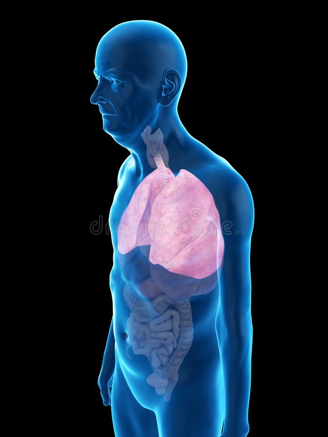 An old mans lung. 3d rendered medically accurate illustration of an old mans lung stock illustration
