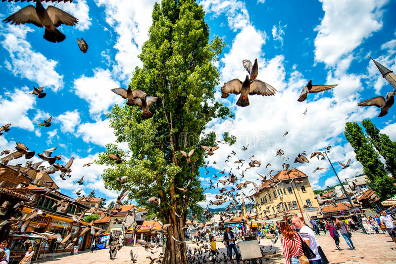 """Old market square in Sarajevo. SARAJEVO, BOSNIA - HERZOGOVINA -€"""" CIRCA JUNE 2015: Crowded old market squire with pigeons on the north bank of the river stock image"""