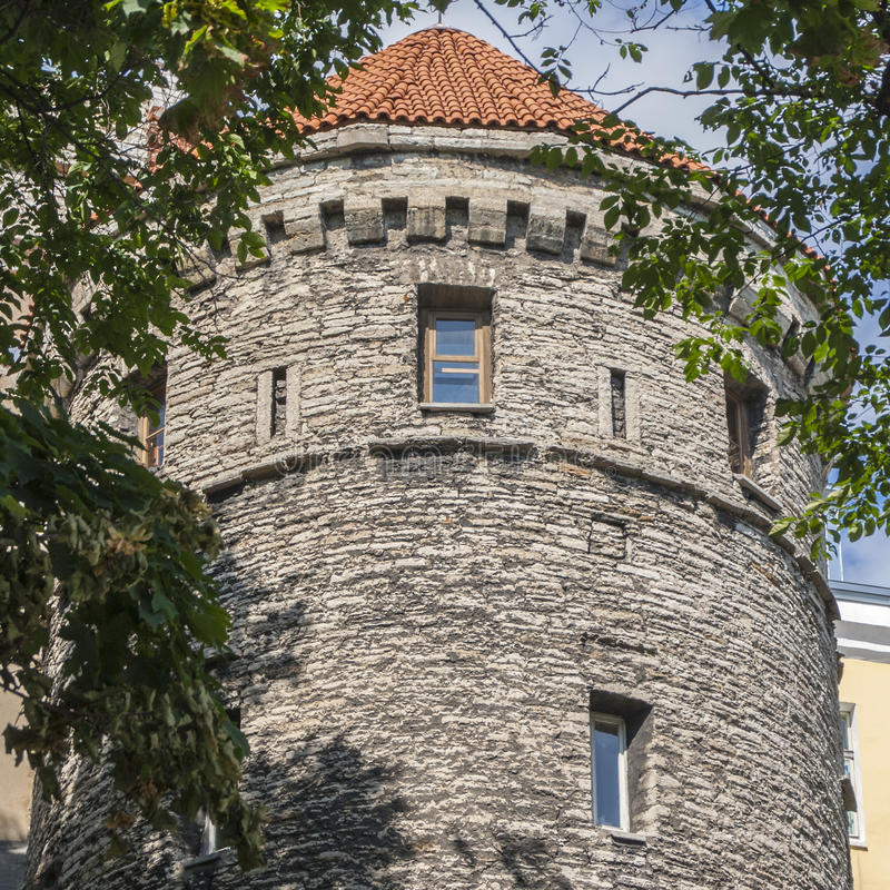 Free Old Medieval Fortress Tower In Tallin Royalty Free Stock Photography - 37207637