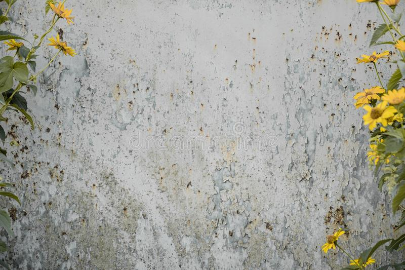 Distressed grunge background with wild flowers on the sides. stock photos