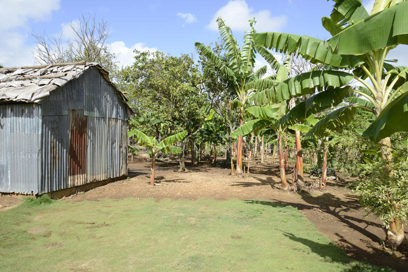 Old metal shed in tropics royalty free stock photos