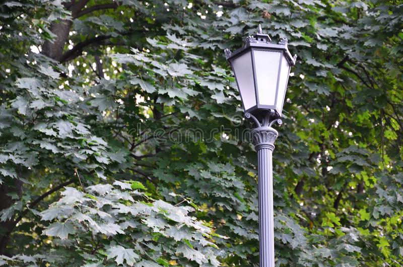 Old metal street lamp in black on a background of green leaves of a tree.  stock images