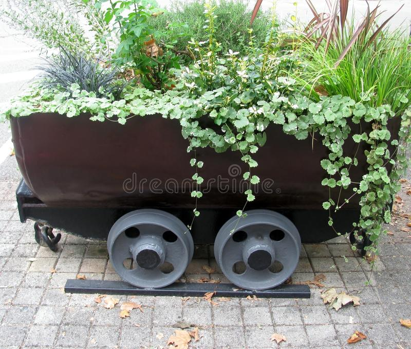Old mine cart as a decorative flower pot royalty free stock photo