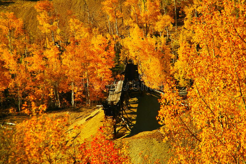 Old mine. Among trees bedecked in autumn color royalty free stock images