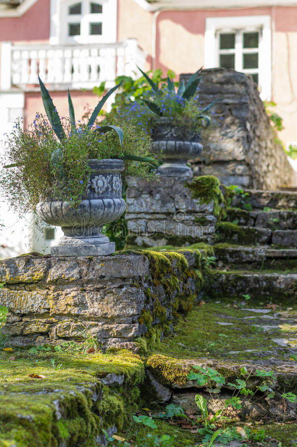 Old mossy stairway with decorative flowerpots royalty free stock image