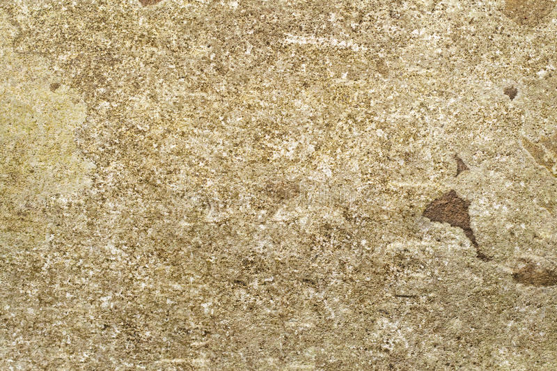 Old Mossy Stone Background Stock Photography