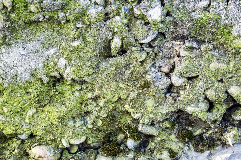 Old mossy stone masonry royalty free stock photos