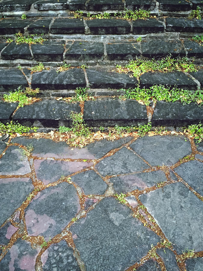 Old mossy stone steps stock photos