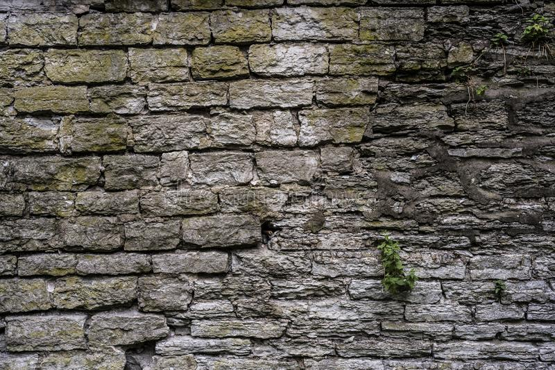 Old mossy stone wall royalty free stock photo