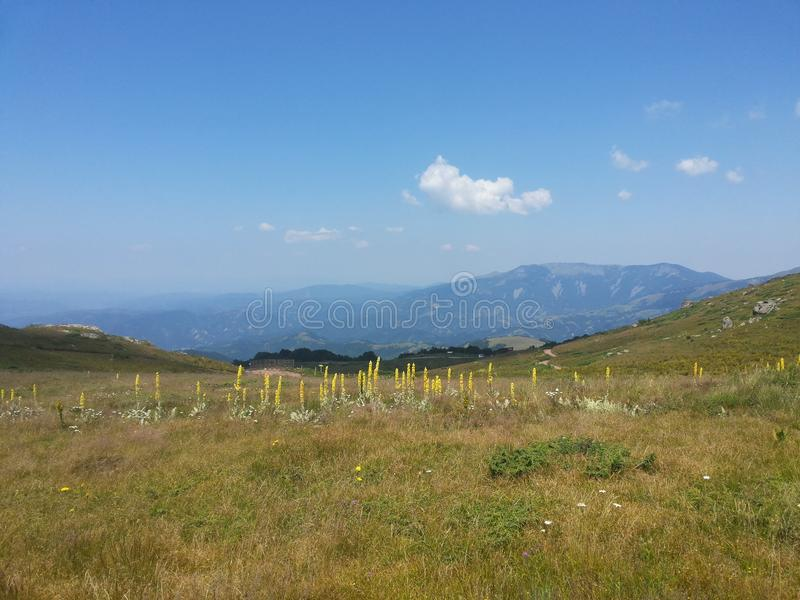 Old Mountain in Serbia on very top royalty free stock photo