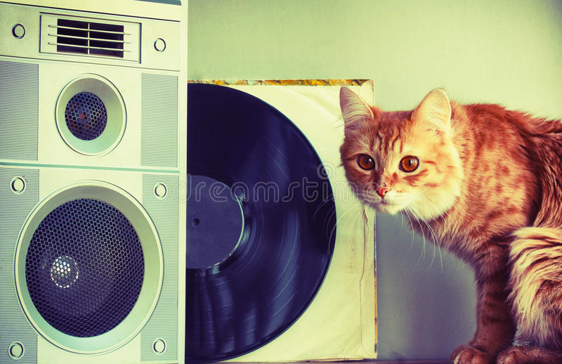Old music speaker in foreground, red cat and record. Old music speaker in the foreground, red cat, record, retro style composition, selective focus on column stock photos