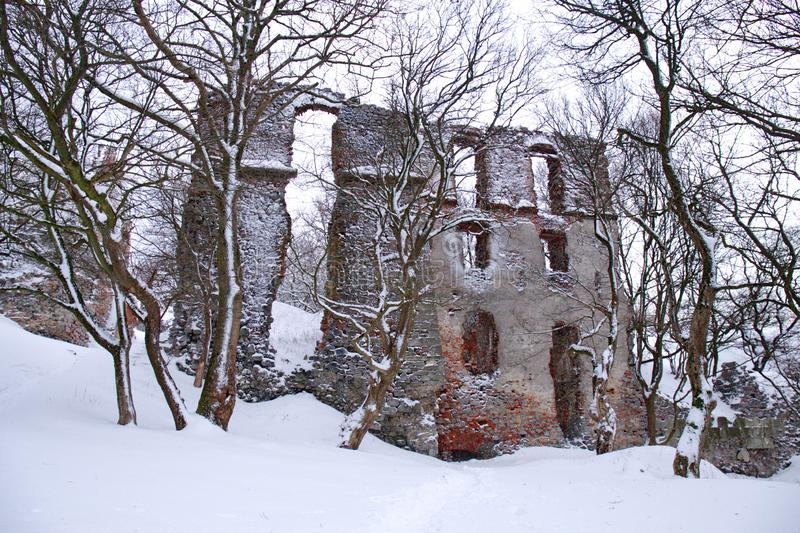 Old mysterious ruin castle in Carpathians in winter cloudy day royalty free stock image