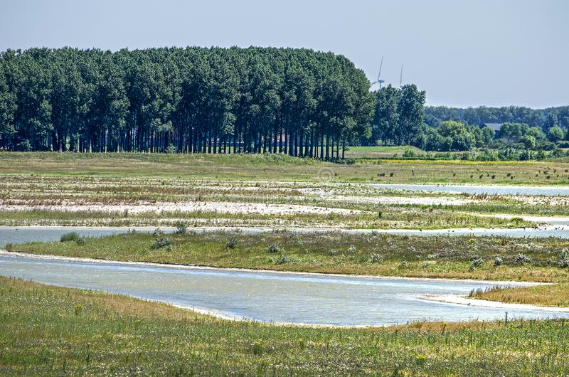 Old and new landscape. Municipality of Sluis, the Netherlands, July 2, 2018: new tidal nature created at Waterdunen project, with groups of trees and other old stock images