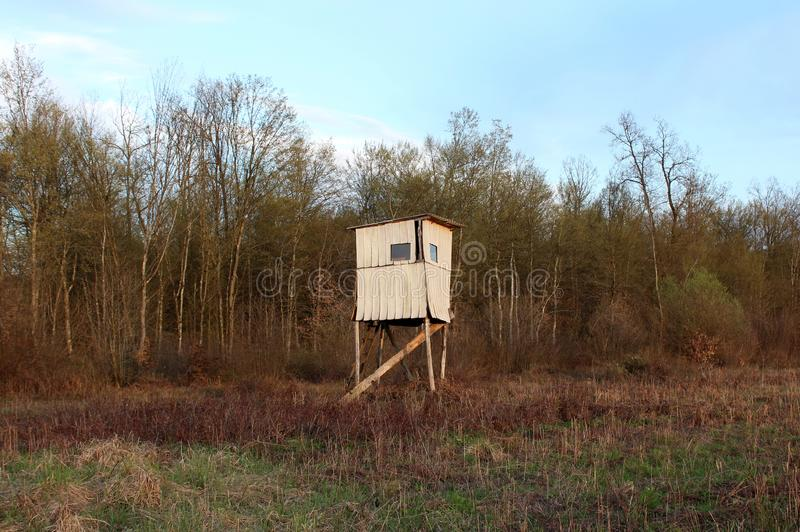 Old now unused broken dilapidated hunting observation tower barely standing on wooden supports surrounded with high grass and dry. Vegetation with dense trees royalty free stock photo